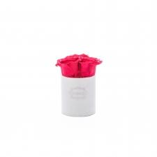 XS BLUMMiN - valge sametkarp VIBRANT RED roosidega