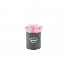 XS BLUMMIN - DARK GREY VELVET BOX WITH BRIDAL PINK ROSES