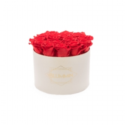 LARGE BLUMMIN CREAM WHITE BOX WITH VIBRANT RED ROSES