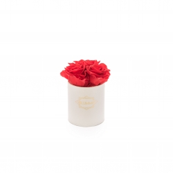 XS BLUMMIN WHITE BOX WITH VIBRANT RED ROSES