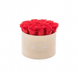 LARGE BLUMMIN NUDE VELVET BOX WITH VIBRANT RED ROSES