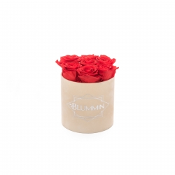 SMALL VELVET NUDE BOX WITH VIBRANT RED ROSES