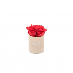 XS BLUMMIN NUDE VELVET BOX WITH VIBRANT RED ROSES