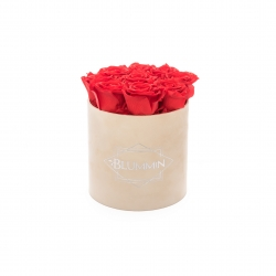 MEDIUM BLUMMIN NUDE VELVET BOX WITH VIBRANT RED ROSES