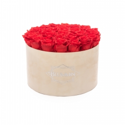 EXTRA LARGE VELVET NUDE BOX WITH VIBRANT RED ROSES