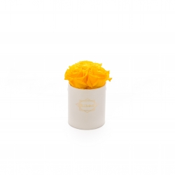 XS BLUMMIN CREAM BOX WITH YELLOW ROSES