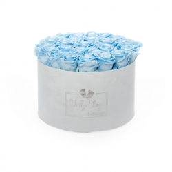 BABY BOY - LIGHT BLUE VELVET BOX WITH 25 BABY BLUE ROSES
