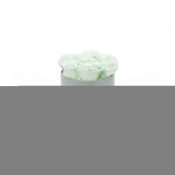 BABY BOY - LIGHT GREY BOX WITH 7 MINT ROSES