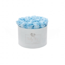 BABY BOY - LIGHT BLUE VELVET BOX WITH 15 BABY BLUE ROSES