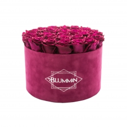 EXTRA LARGE VELVET FUCHSIA BOX WITH CHERRY ROSES