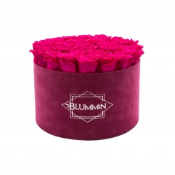 EXTRA LARGE BLUMMIN FUCHSIA VELVET BOX WITH HOT PINK ROSES