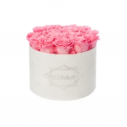 LARGE BLUMMIN WHITE VELVET BOX WITH BABY PINK ROSES