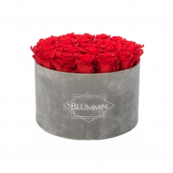 EXTRA LARGE VELVET LIGHT GREY BOX WITH VIBRANT RED ROSES