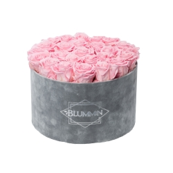 EXTRA LARGE BLUMMIN - LIGHT GREY VELVET BOX WITH BRIDAL PINK ROSES
