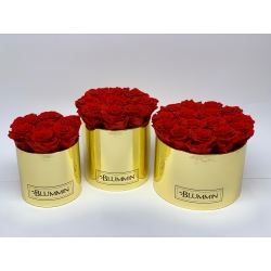 MEDIUM GOLDEN BOX WITH 9  VIBRANT RED ROSES