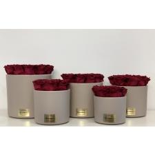 Beez keraamiline pott CHERRY uinuvate roosidega