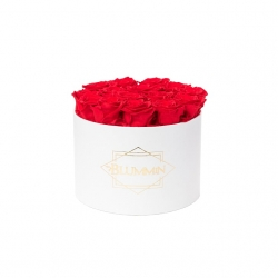 LARGE CLASSIC WHITE BOX WITH VIBRANT RED ROSES