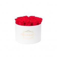 LARGE BLUMMiN - valge karp VIBRANT RED roosidega