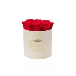 MEDIUM CLASSIC CREAM BOX WITH VIBRANT RED ROSES