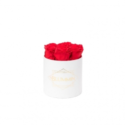 SMALL CLASSIC WHITE BOX WITH VIBRANT RED ROSES