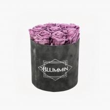 MEDIUM BLUMMiN - tumehall sametkarp LILAC uinuvate roosidega