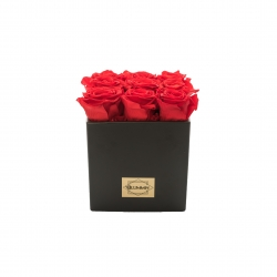 BLACK CERAMIC POT WITH 9 VIBRANT RED ROSES