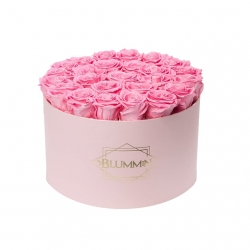 EXTRA LARGE CLASSIC LIGHT PINK BOX WITH BABY PINK ROSES