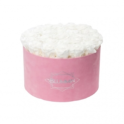 EXTRA LARGE VELVET PINK BOX WITH WHITE ROSES