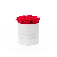 MEDIUM kallile emale - valge sametkarp VIBRANT RED roosidega (NB! Kuldne logo!)