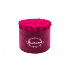 LARGE FUCHSIA VELVET BOX WITH HOT PINK ROSES