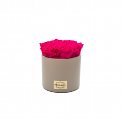 BEIGE CERAMIC POT WITH 7 HOT PINK ROSES