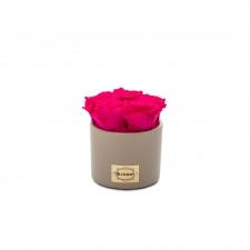 Beez keraamiline pott 5 HOT PINK uinuva roosiga