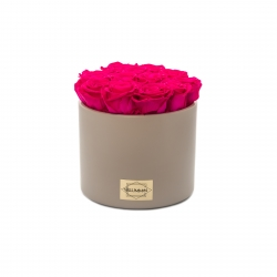 BEIGE CERAMIC POT WITH 13 HOT PINK ROSES