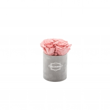 XS BLUMMIN - LIGHT GREY VELVET BOX WITH VINTAGE PINK ROSES