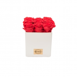 WHITE CERAMIC POT WITH 9 VIBRANT RED ROSES