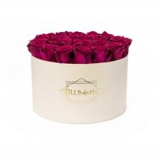 EXTRA LARGE BLUMMiN - kreemikasvalge karp CHERRY roosidega