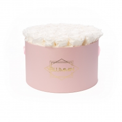 EXTRA LARGE CLASSIC LIGHT PINK BOX WITH WHITE ROSES
