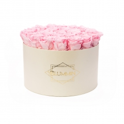 EXTRA LARGE CLASSIC CREAM BOX WITH BRIDAL PINK ROSES