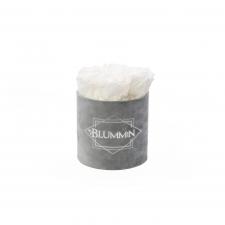 SMALL BLUMMiN - helehall sametkarp WHITE roosidega