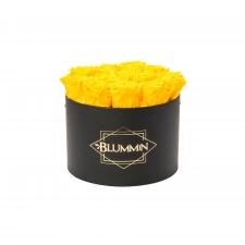 LARGE BLUMMIN - BLACK BOX WITH YELLOW ROSES