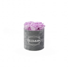 SMALL BLUMMiN - helehall sametkarp BABY LILLY roosidega