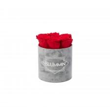 SMALL VELVET LIGHT GREY BOX WITH VIBRANT RED ROSES