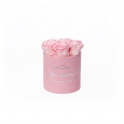 SMALL BLUMMiN - PINK VELVET BOX WITH BRIDAL PINK ROSES