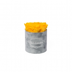 SMALL VELVET LIGHT GREY BOX WITH YELLOW ROSES