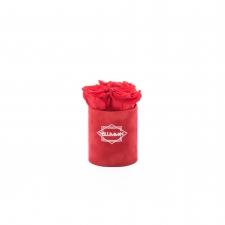 XS BLUMMIN - RED VELVET BOX WITH VIBRANT RED ROSES