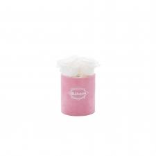 XS BLUMMiN - PINK VELVET BOX WITH WHITE ROSES