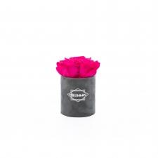 XS BLUMMIN - DARK GREY VELVET BOX WITH HOT PINK ROSES