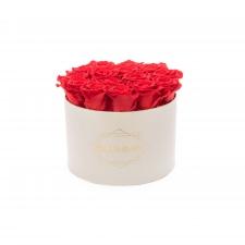 LARGE BLUMMiN - kreemikasvalge karp VIBRANT RED uinuvate roosidega