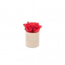 XS BLUMMIN NUDE VELVET BOX WITH VIBRANT RED ROSES