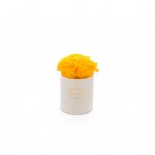 XS BLUMMIN CREAM BOX WITH YELLOW ROSES